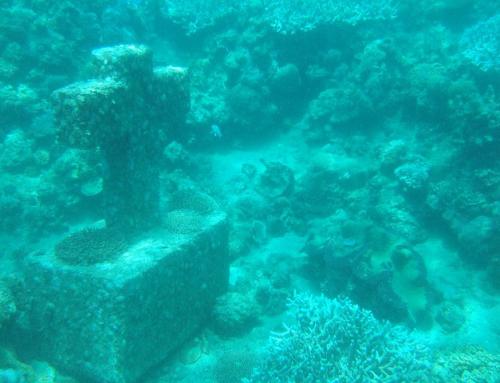 Anilao Mabini – A Diver's Paradise